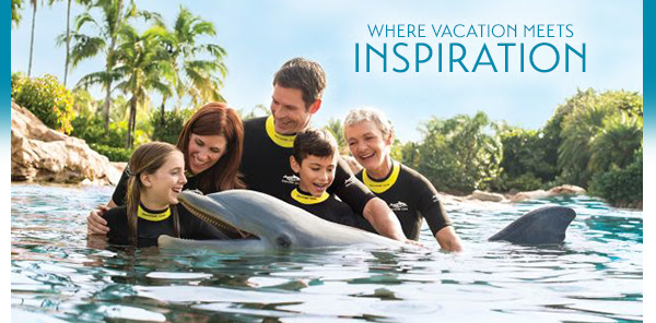 SeaWorld Parks Now Offering Vacation Packages Featuring One Day at the All-inclusive Discovery Cove